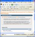 Java SE Runtime Environment (JRE) 6 Update 11