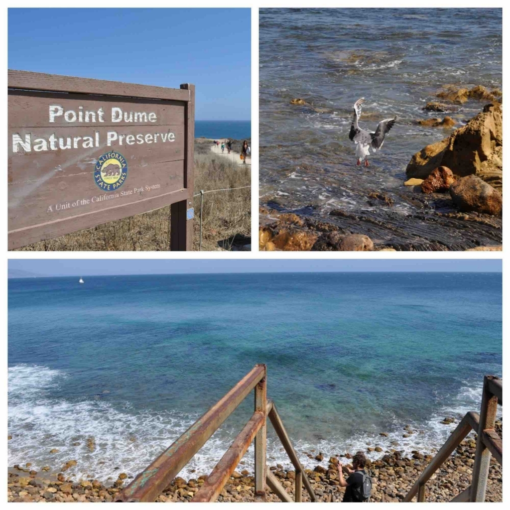 Point Dume Natural Preserve