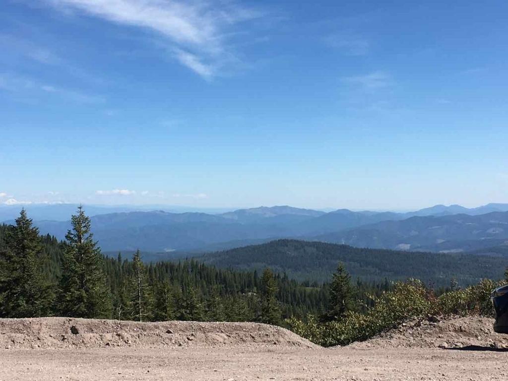 Bunny Flat Trailheadからの眺め