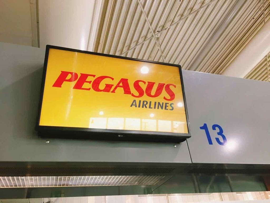 ペガサス航空