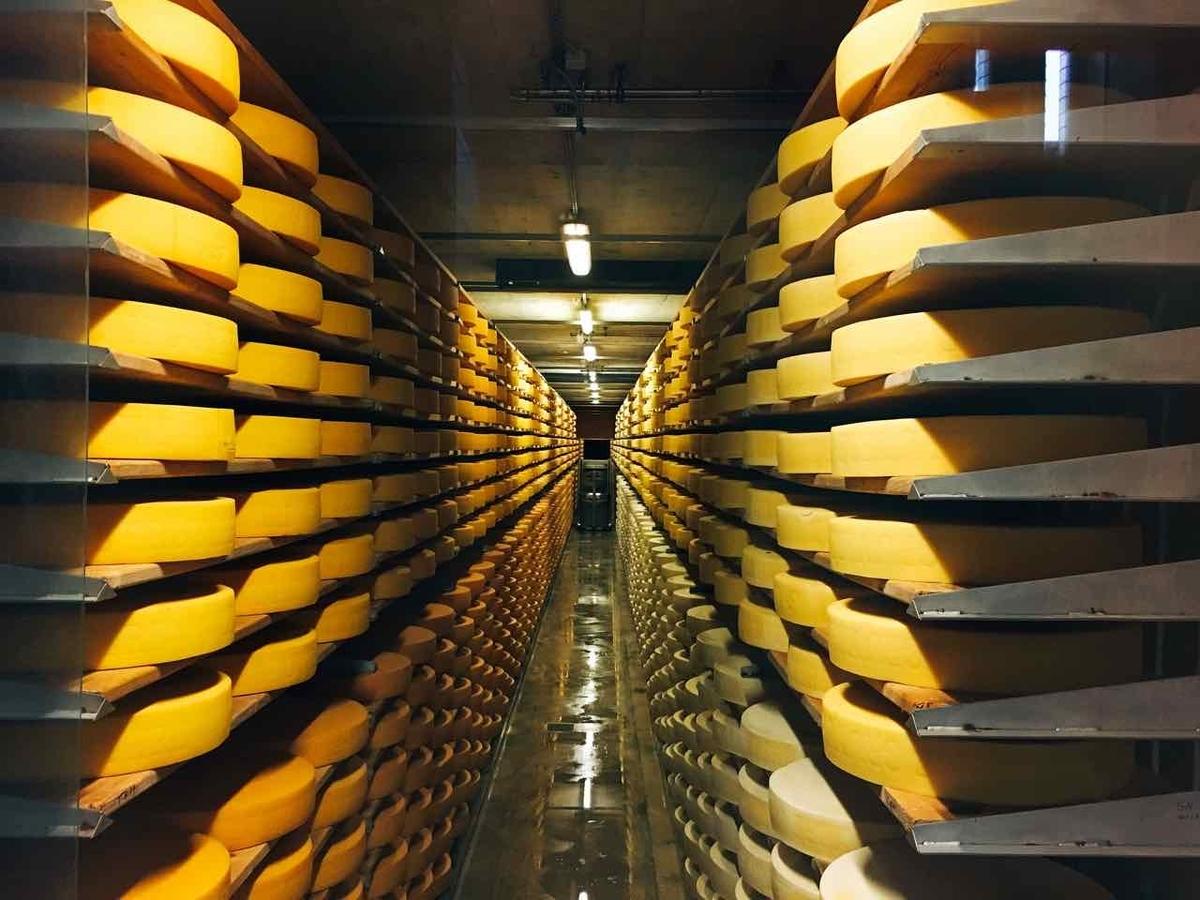 グリュイエール チーズ