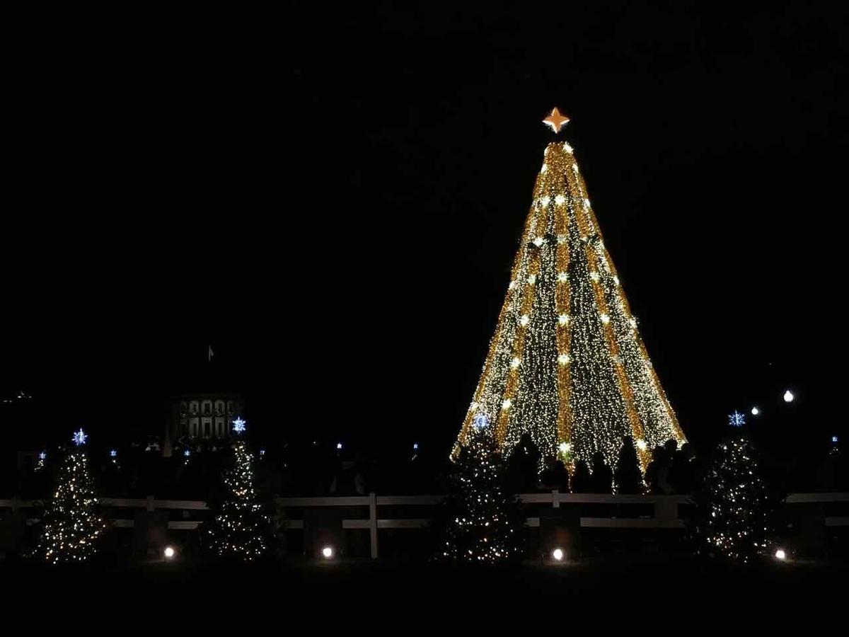 ワシントン クリスマス
