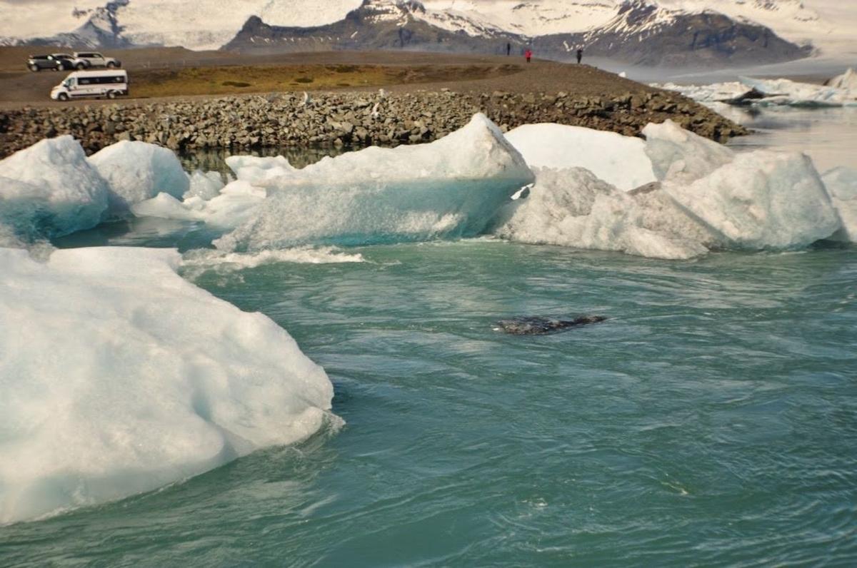 運転が不安な方には、夏もオススメ!  夏(5月末)のヨークルスアゥルロゥン氷河湖の様子は下の写真の通り。  雪の量や氷の量は夏のほうが少ないかなという感じがします。