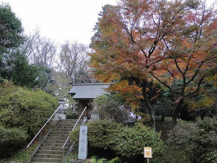 f:id:noyama_ko:20201203221712j:plain