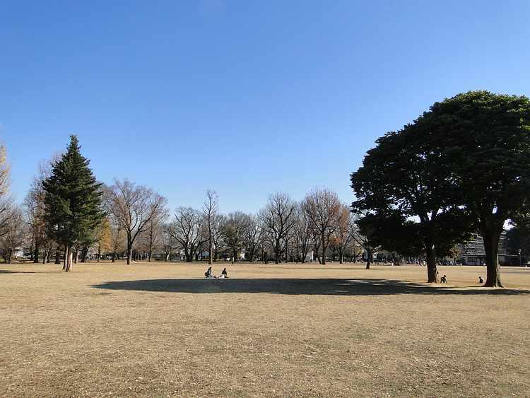 f:id:noyama_ko:20201222181557j:plain