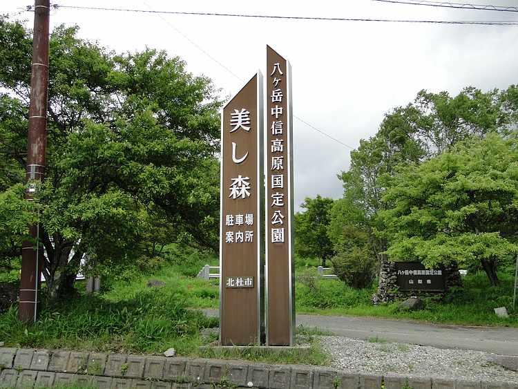f:id:noyama_ko:20210710120819j:plain