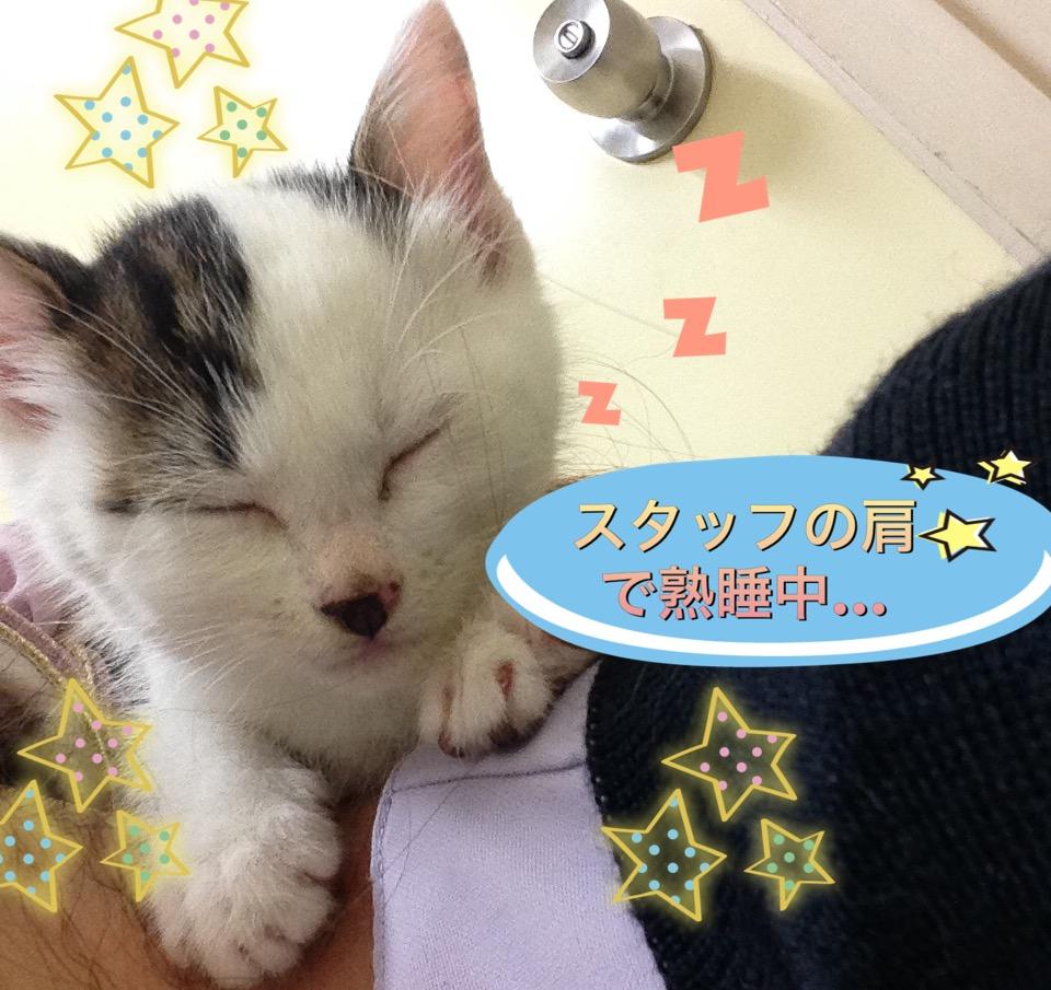 f:id:nozawa_clinic:20160615165756j:plain