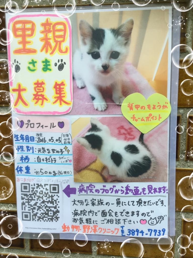 f:id:nozawa_clinic:20160615171254j:plain