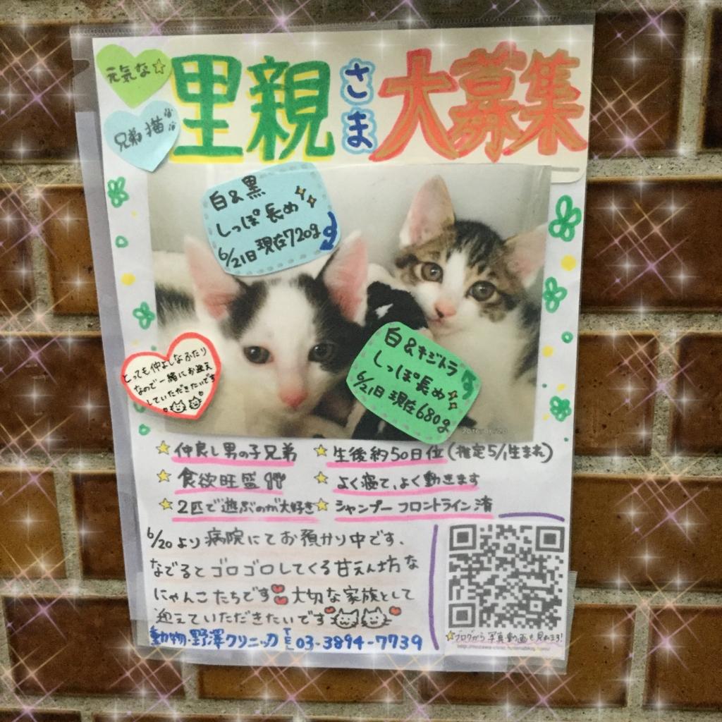 f:id:nozawa_clinic:20160624164843j:plain
