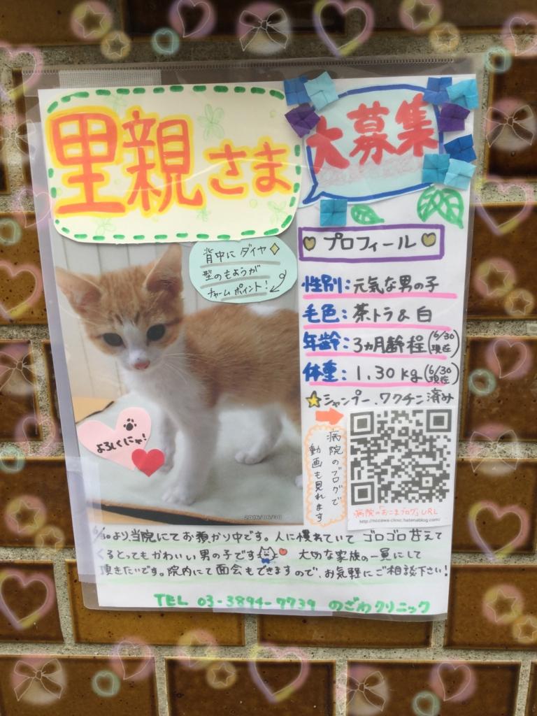 f:id:nozawa_clinic:20160701182137j:plain