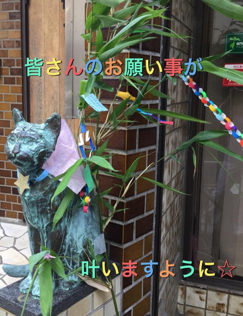 f:id:nozawa_clinic:20160707154646j:plain