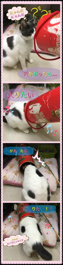 f:id:nozawa_clinic:20160713162806p:plain
