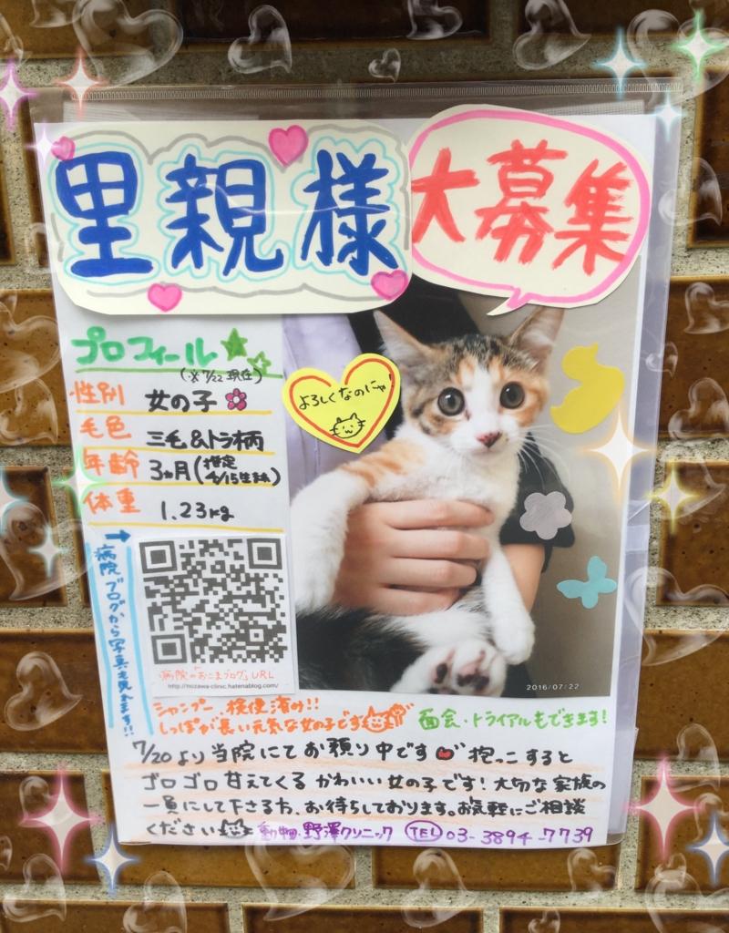 f:id:nozawa_clinic:20160723101213j:plain
