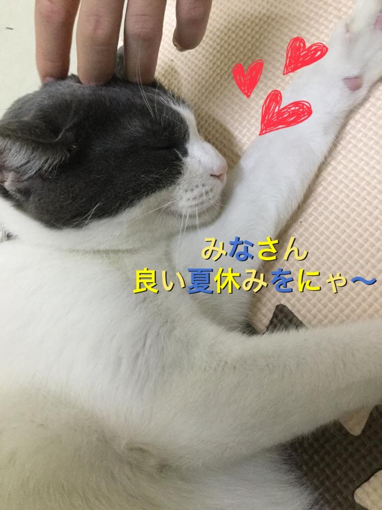 f:id:nozawa_clinic:20160808105639j:plain