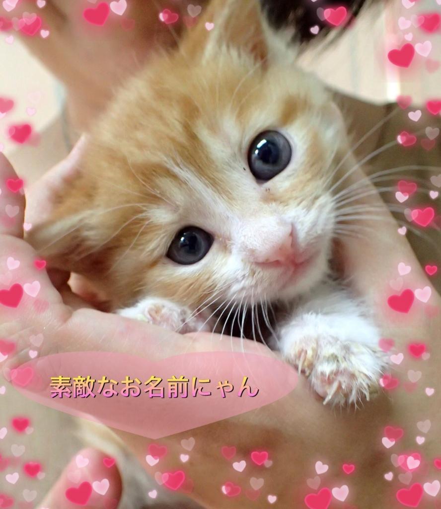 f:id:nozawa_clinic:20160906185439j:plain