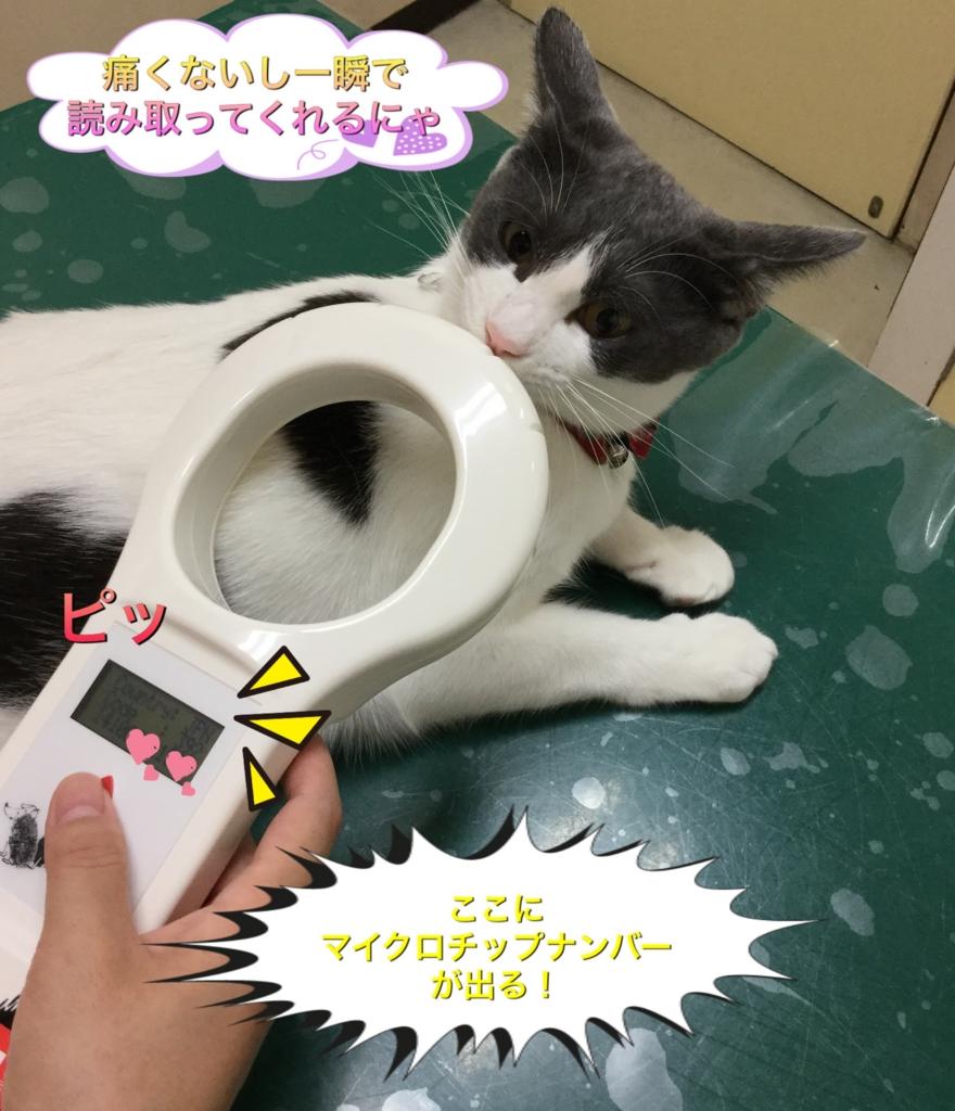 f:id:nozawa_clinic:20160909173417j:plain