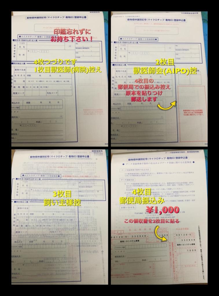 f:id:nozawa_clinic:20160909175351p:plain