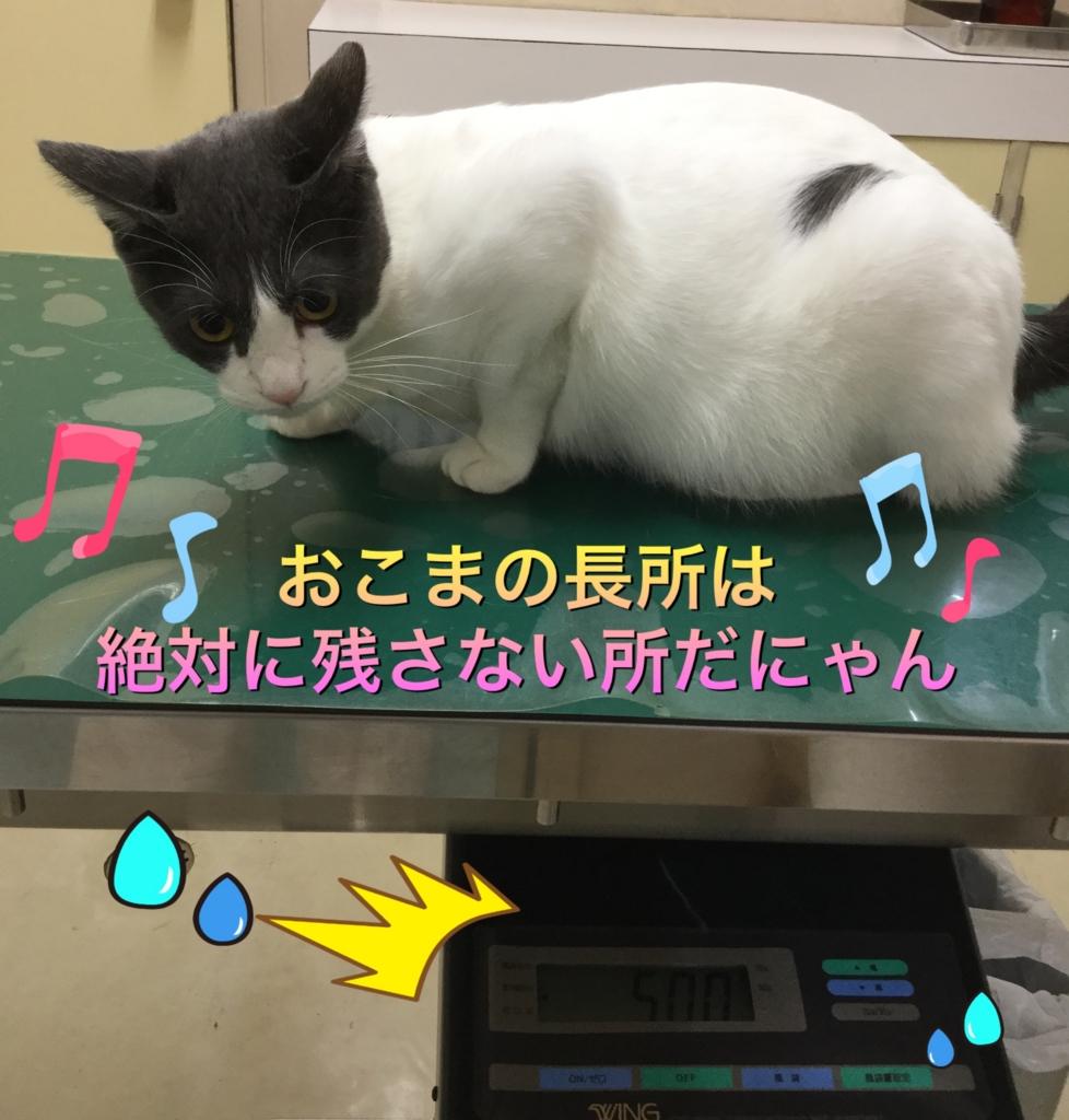 f:id:nozawa_clinic:20160913190227j:plain