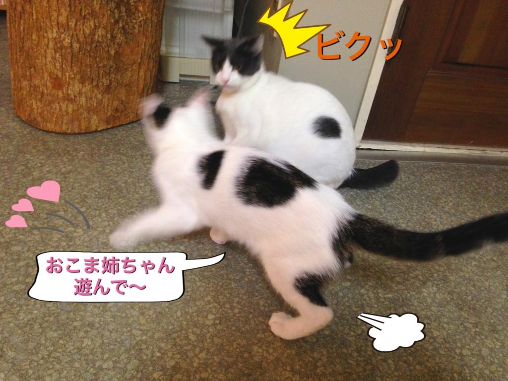 f:id:nozawa_clinic:20160915164847j:plain