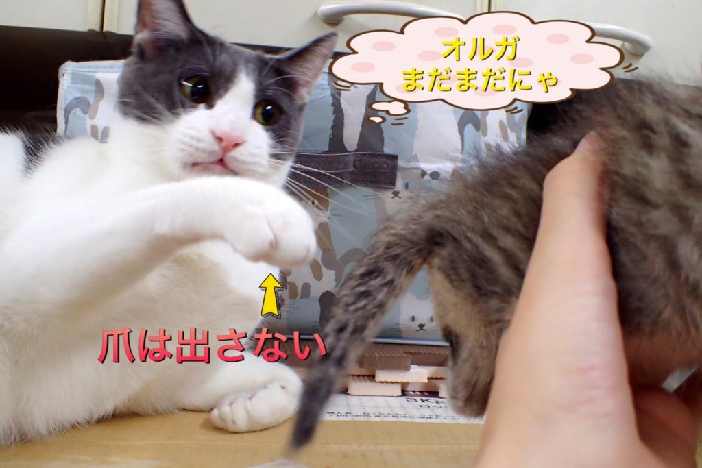 f:id:nozawa_clinic:20161021100315j:plain