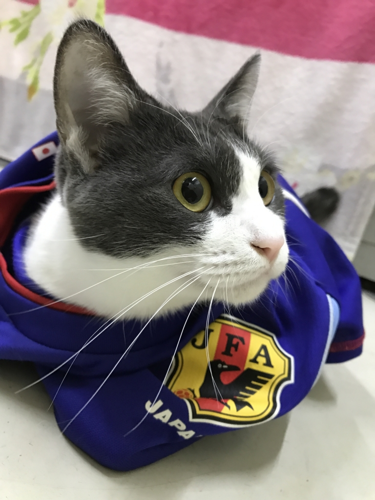 f:id:nozawa_clinic:20161110171142j:plain