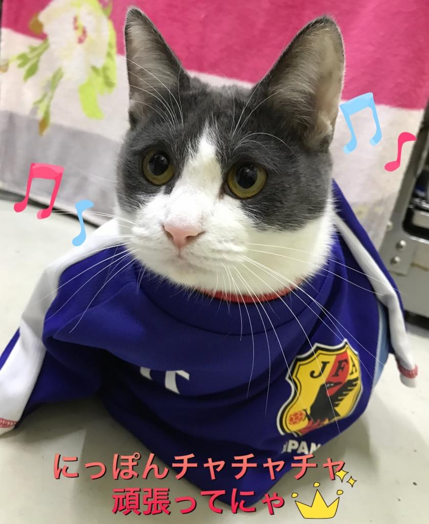 f:id:nozawa_clinic:20161110172244j:plain