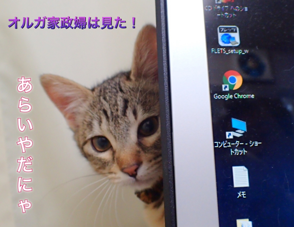 f:id:nozawa_clinic:20161130161054j:plain