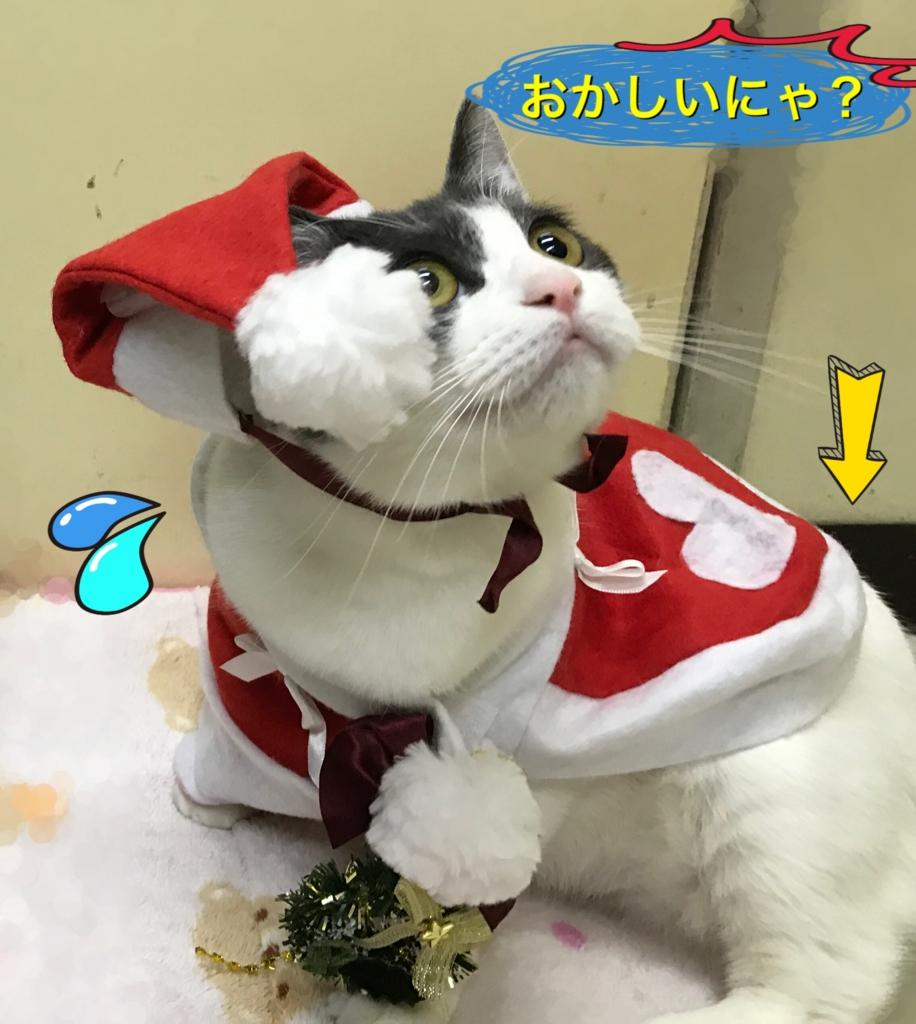 f:id:nozawa_clinic:20161226180355j:plain