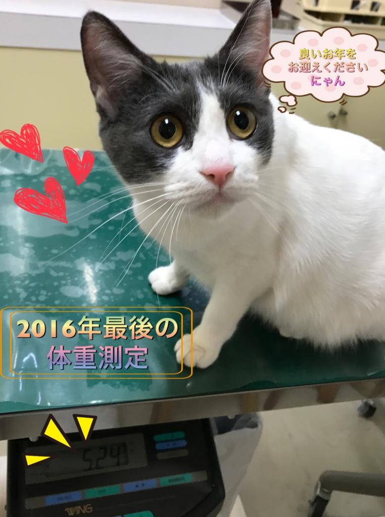 f:id:nozawa_clinic:20161229173816j:plain