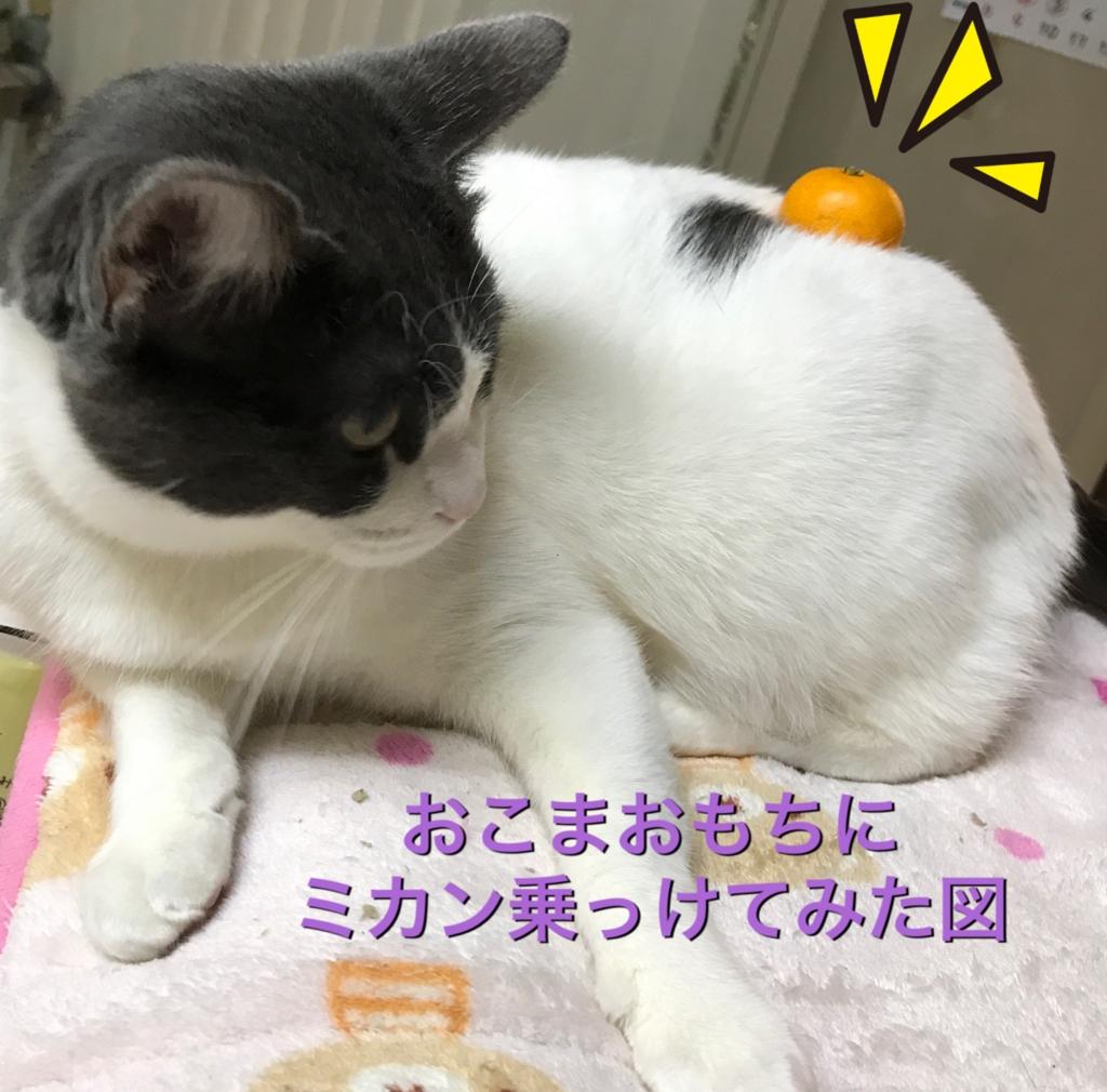 f:id:nozawa_clinic:20170110163225j:plain