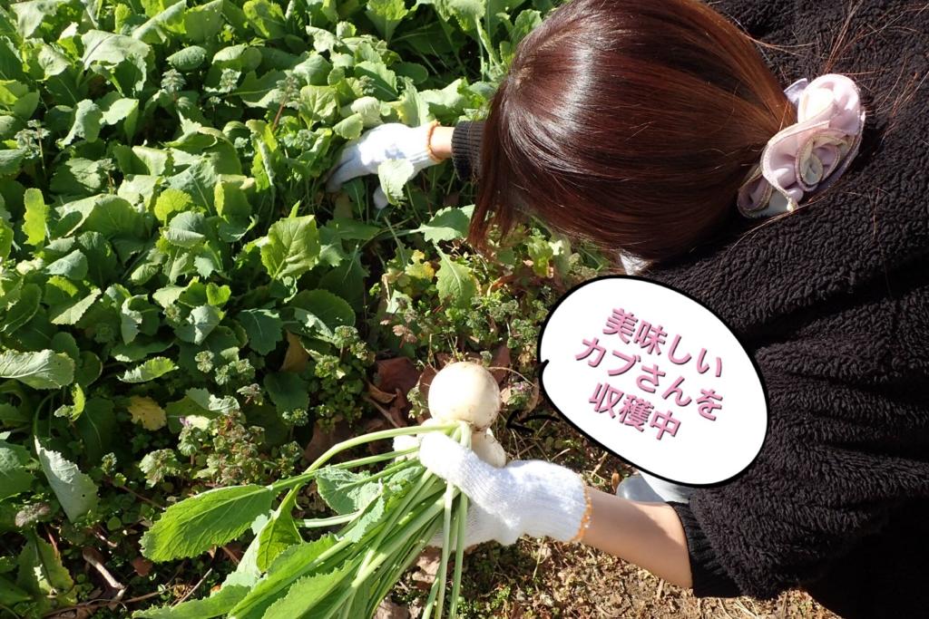 f:id:nozawa_clinic:20170203112421j:plain