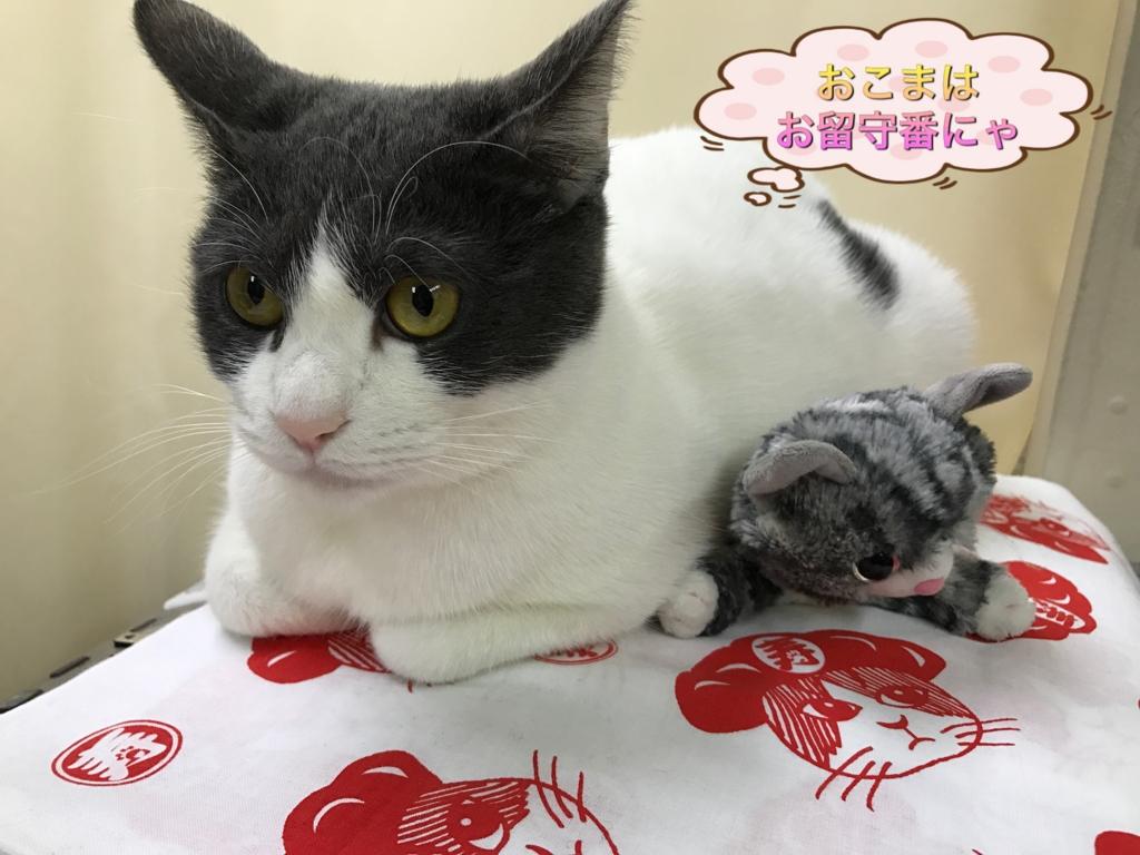 f:id:nozawa_clinic:20170203154707j:plain