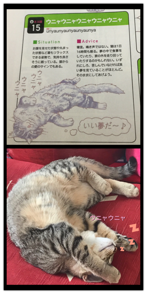 f:id:nozawa_clinic:20170217153118p:plain