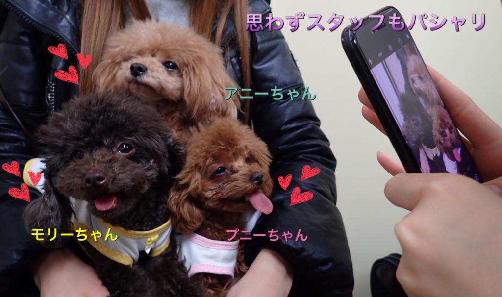 f:id:nozawa_clinic:20170317172216j:plain