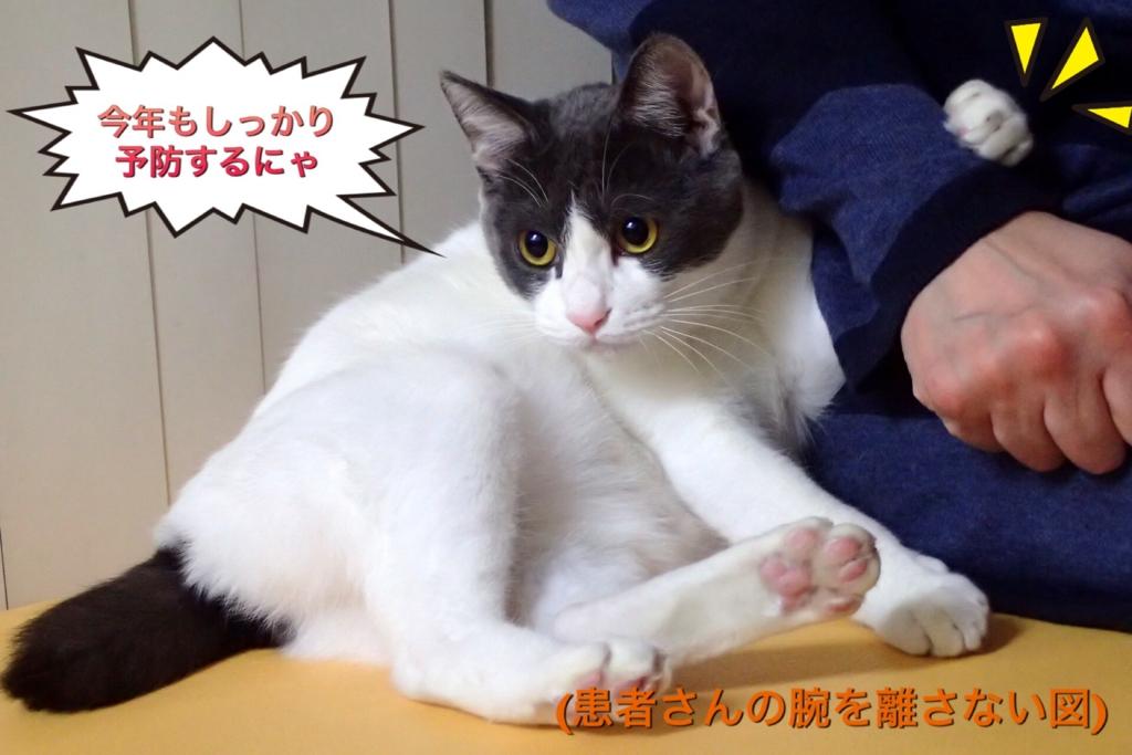 f:id:nozawa_clinic:20170330165831j:plain