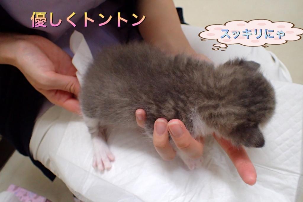 f:id:nozawa_clinic:20170510095726j:plain