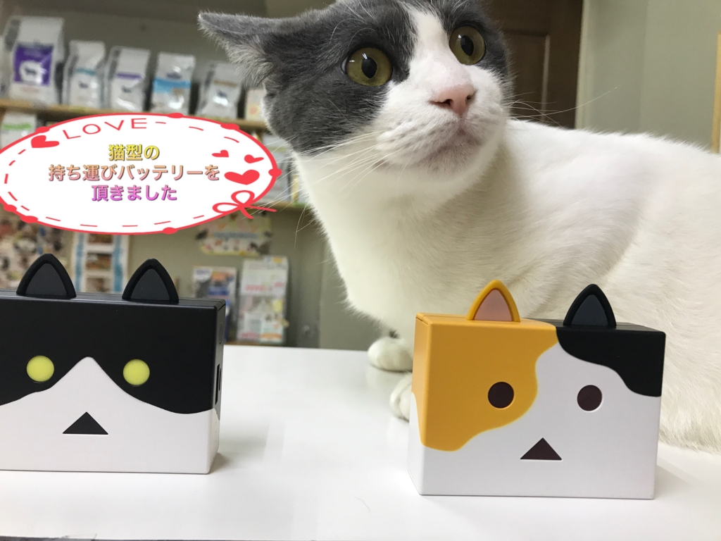f:id:nozawa_clinic:20170524105812j:plain