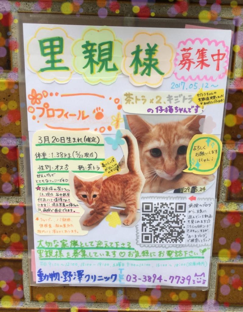 f:id:nozawa_clinic:20170524110637j:plain