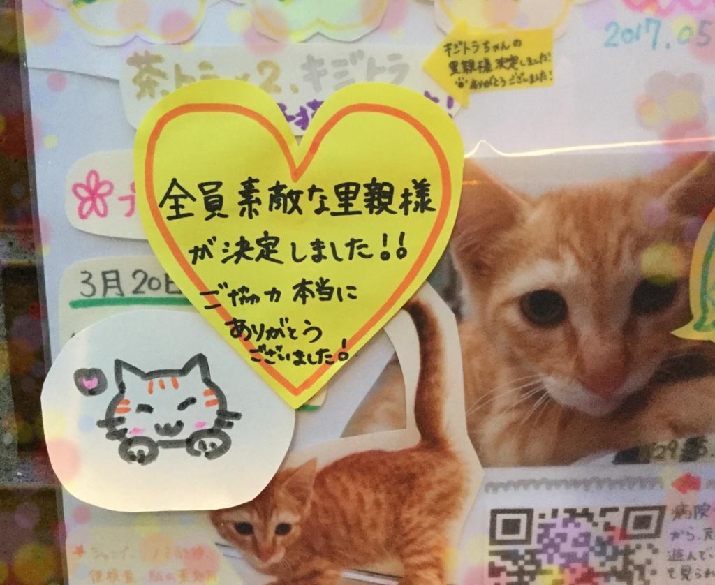 f:id:nozawa_clinic:20170529095039j:plain