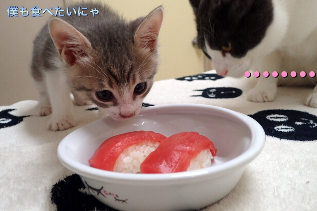 f:id:nozawa_clinic:20170606184530j:plain
