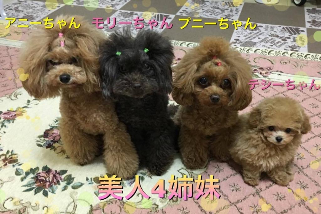 f:id:nozawa_clinic:20170628152619j:plain