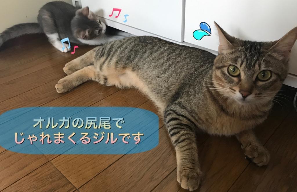 f:id:nozawa_clinic:20170628154553j:plain