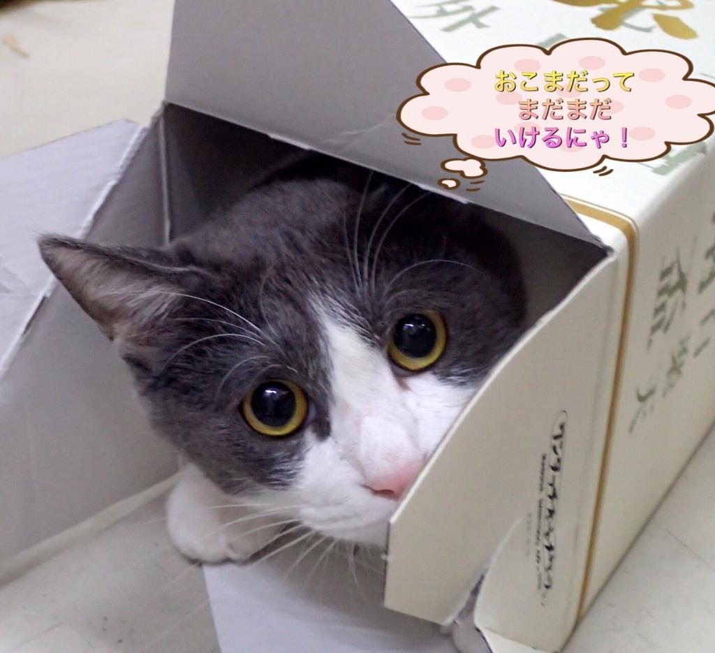 f:id:nozawa_clinic:20170628161240j:plain