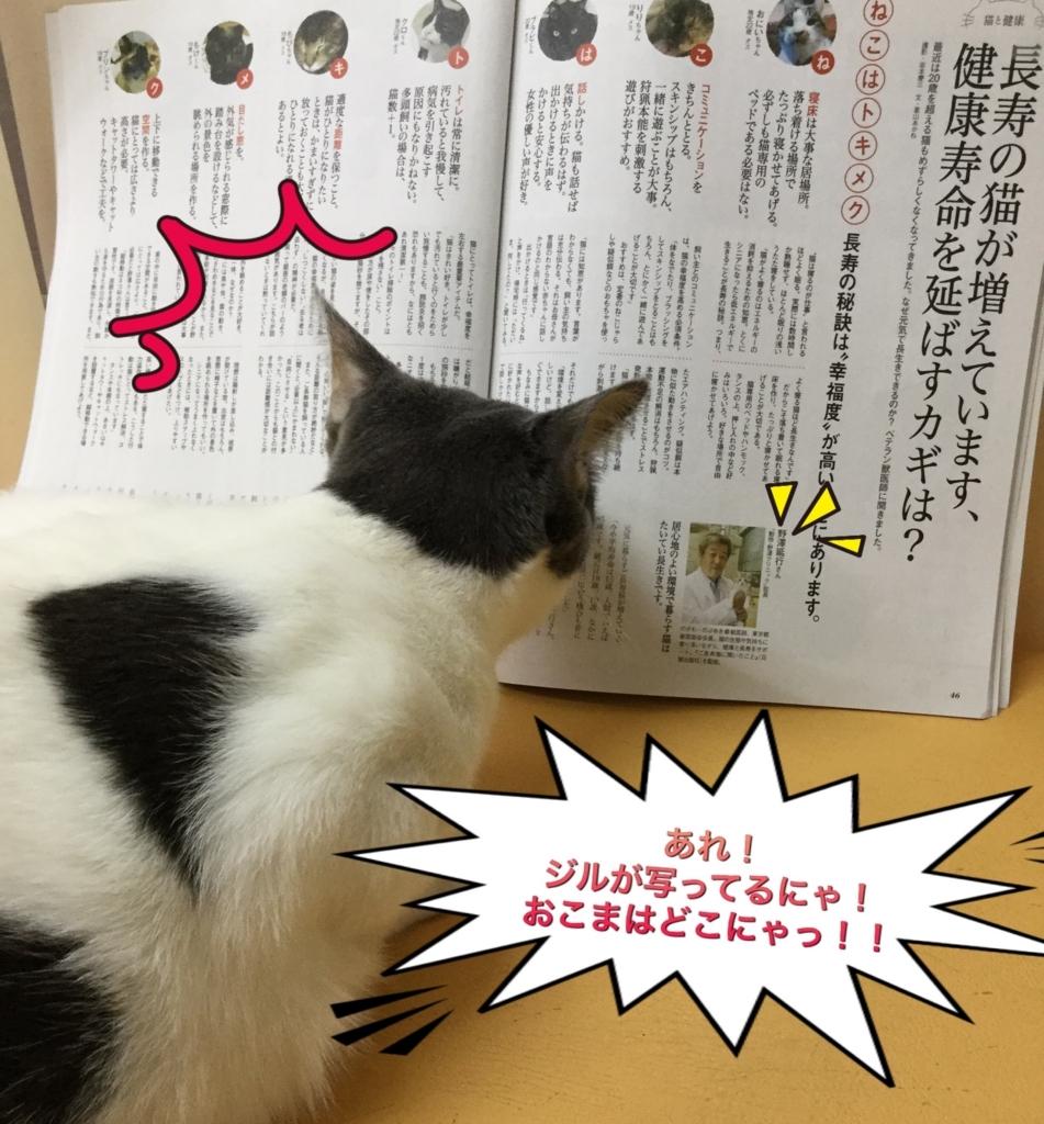 f:id:nozawa_clinic:20170725170714j:plain