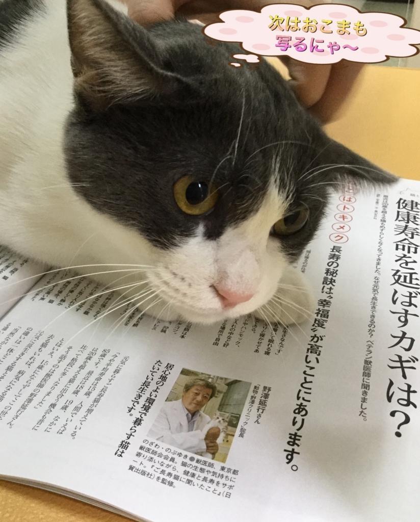 f:id:nozawa_clinic:20170725171350j:plain