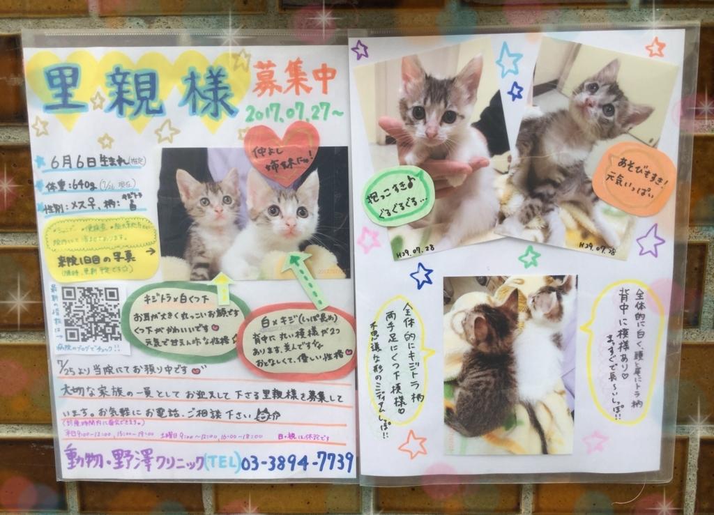 f:id:nozawa_clinic:20170729114402j:plain