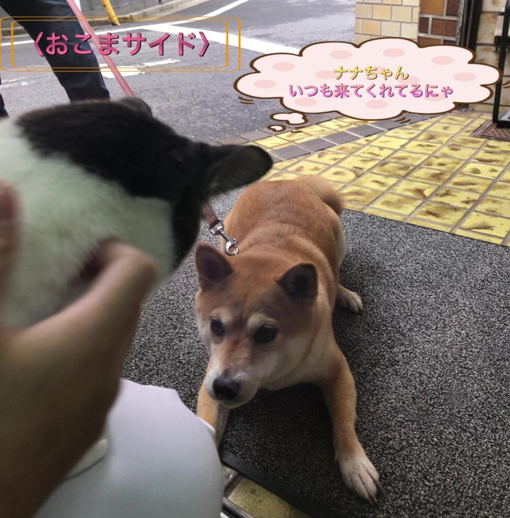 f:id:nozawa_clinic:20170831175328j:plain