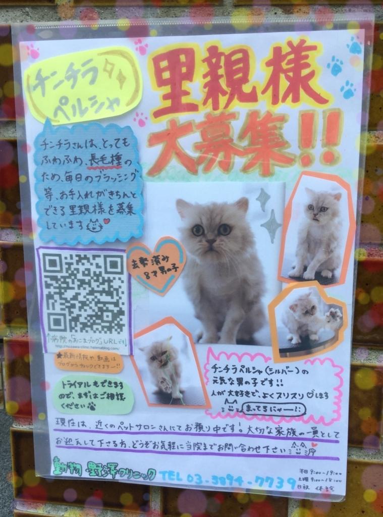 f:id:nozawa_clinic:20171019113416j:plain