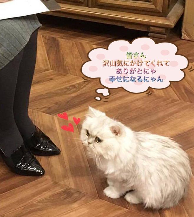 f:id:nozawa_clinic:20171025184612j:plain