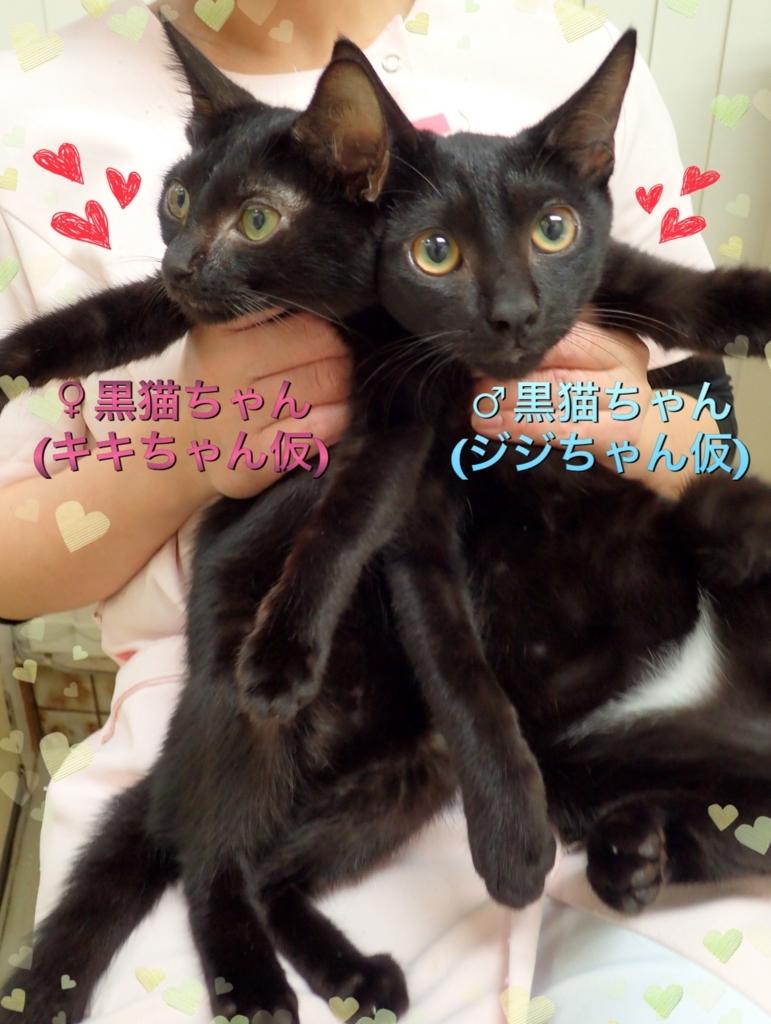 f:id:nozawa_clinic:20171025185520j:plain